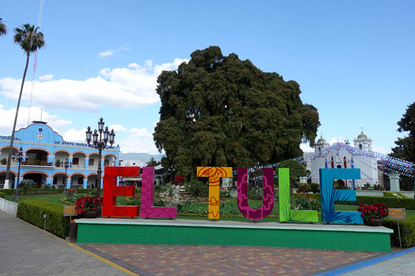 In El Tule...