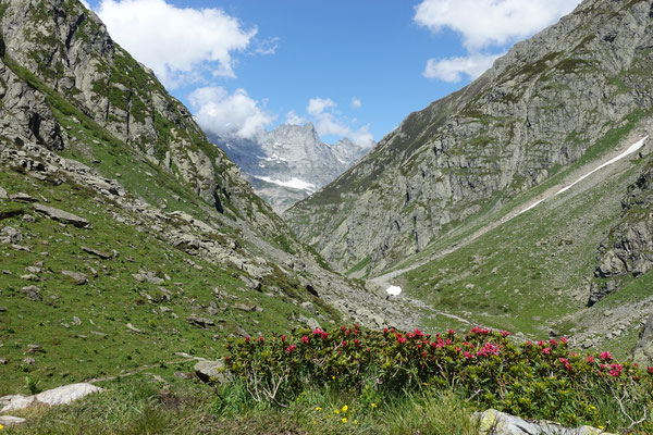 Wunderschöne Bergwelt!