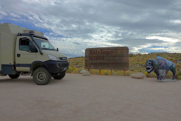 Wir sind mitten im grossen Salzsee, auf Antelope Island