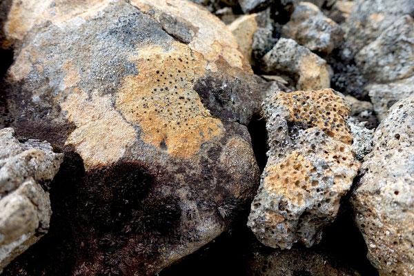 Wundersame Steine