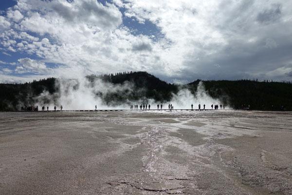 Der Yellowstone ist gut bevölkert