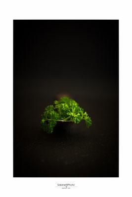 Copyright © Sabine N. Grill