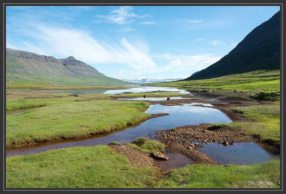 Fjord le long de la route 61