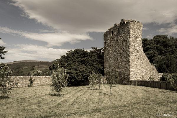 Château de Drumin