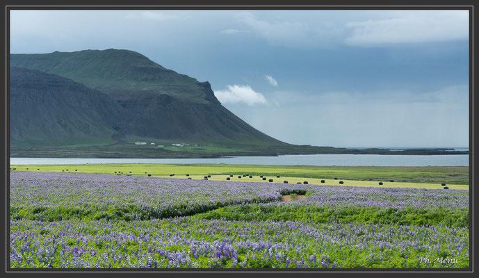 Nord de la péninsule de Snaefellsnes