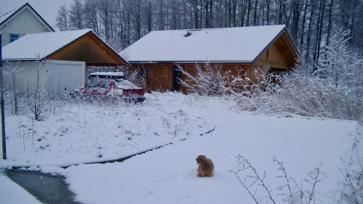 House in the winter. Picture 1