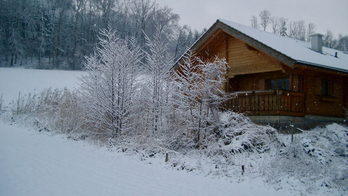 House in the winter. Picture 2