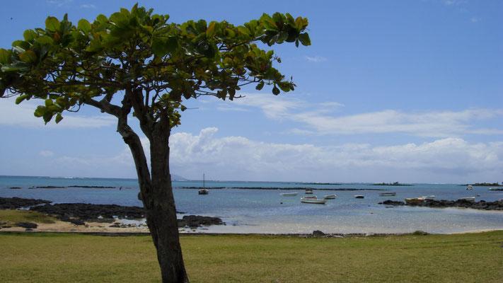 Côte de Pereybère