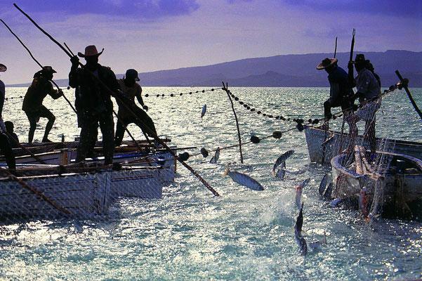 Pêche à l'ile maurice