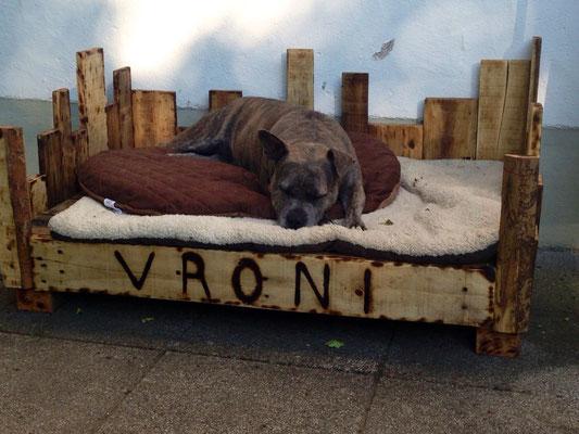 Vroni auf Ihrem Hundethron, 2015