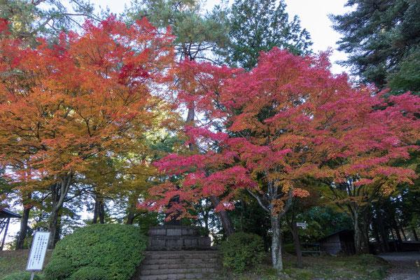 Shiroyama Park, Takayama