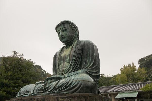 Kamakura Diabutsu (The Great Buddha of Kamakura)