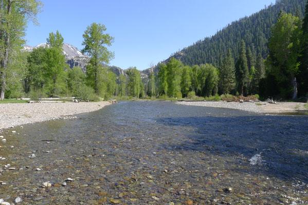 Walker Creek