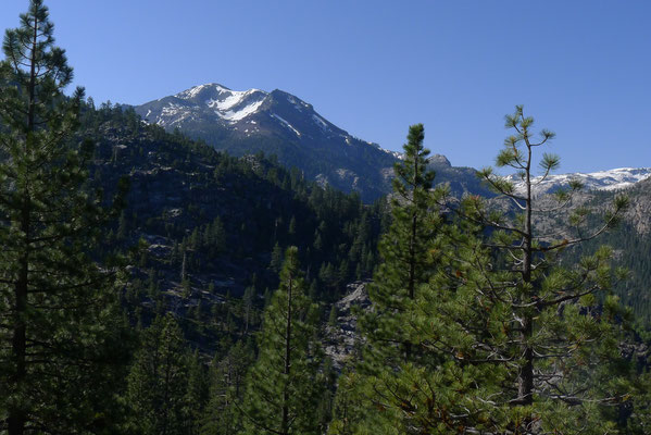 View from Sonora Pass