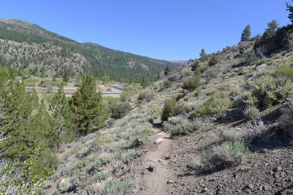 Trail to Lane Lake thru Leavitt Meadows