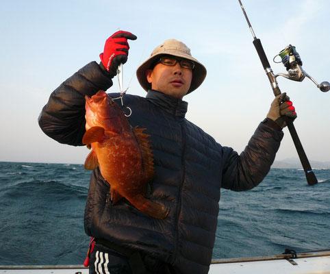 4月14日 昨日と同じ高級魚アコウ ゲット 余り釣れないのに 東側ポイントでも すごい?