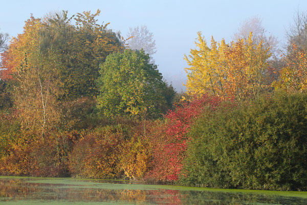 Hullerner Stausee morgens im Herbst.
