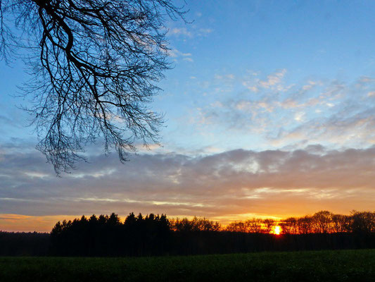 Sonnenuntergang in Holtwick.