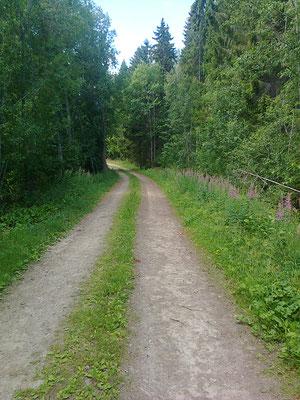 heute erwandere ich hauptsöchlich abgelegene Waldwege
