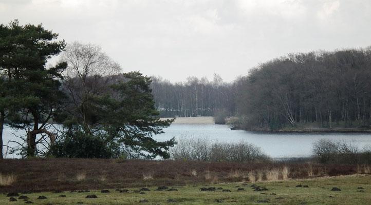 Deel van het meer