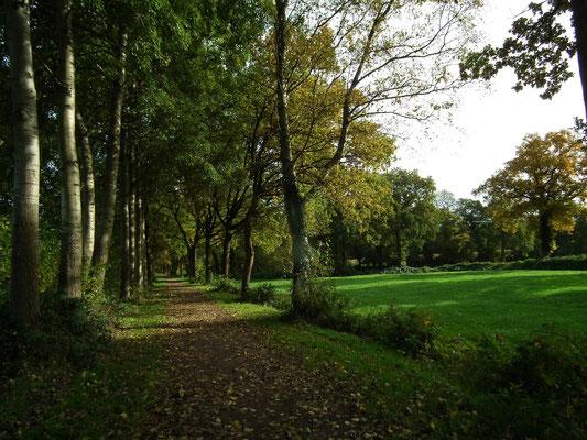 Ostfriesland Wanderweg