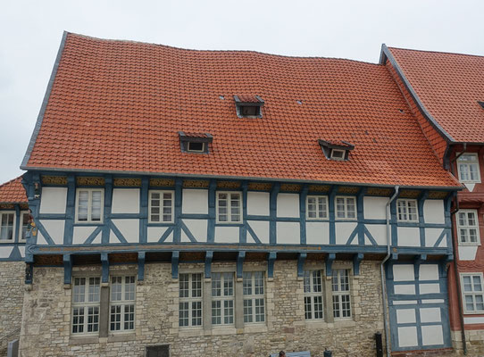 Bracken in Bad Gandersheim