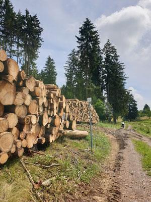 Waldduft