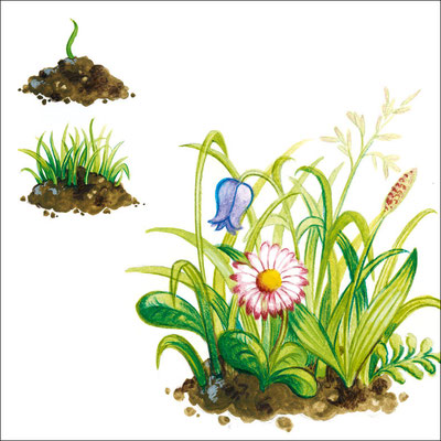© Illustration im Auftrag der Eberle GmbH Werbeagentur GWA (Entwurf)