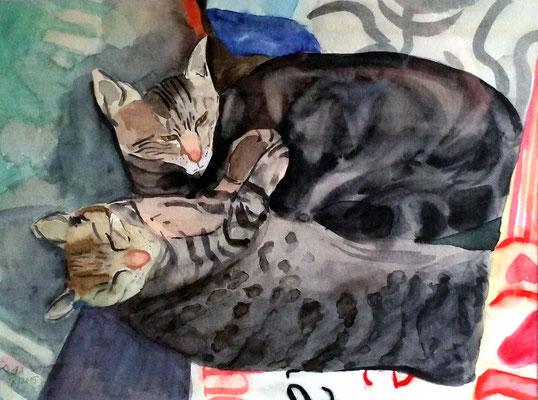 Findus und Molly (Aquarell/Papier, 30 x 40 cm)