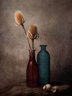 Still Life © Michael Schnabl