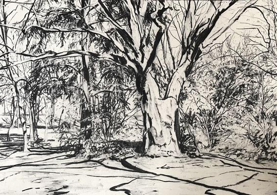 Ferberpark 04, 2017, Kohle auf Papier, 25x35 cm