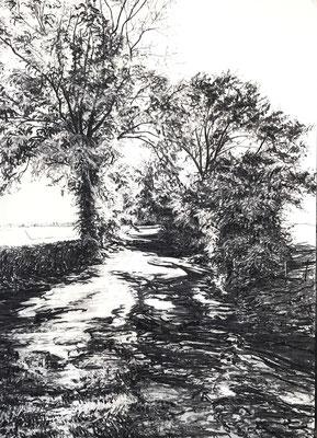 Schleckheim, 2017, Kohle auf Papier, 70 x 50 cm