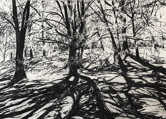 Kurpark 04, 2017, Kohle auf Papier, 25x35 cm