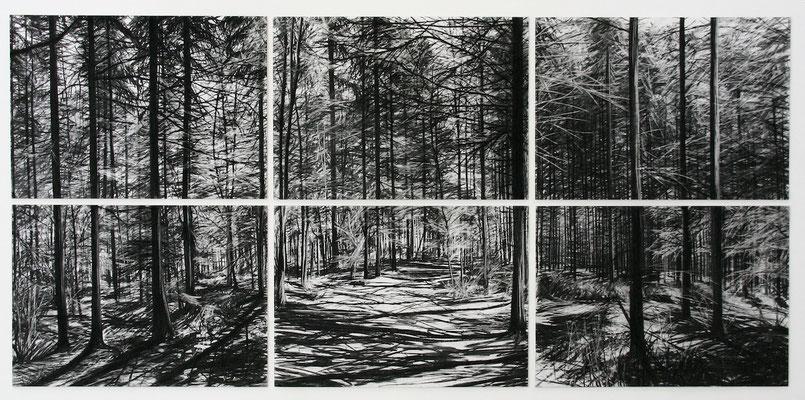 6 Tage, 2010, Kohle auf Papier, 100x210 cm, Sammlung der Bergischen Universität Wuppertal