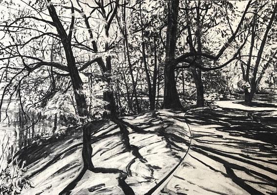 Westpark 02, 2017, Kohle auf Papier, 25x35 cm
