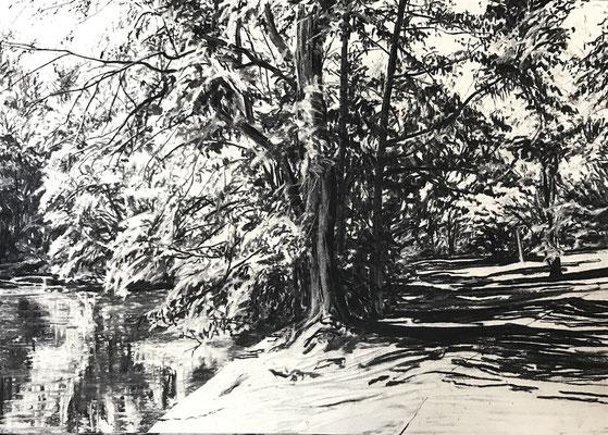 Hangeweiher 01, 2017, Kohle auf Papier, 25x35 cm, Private Sammlung DE