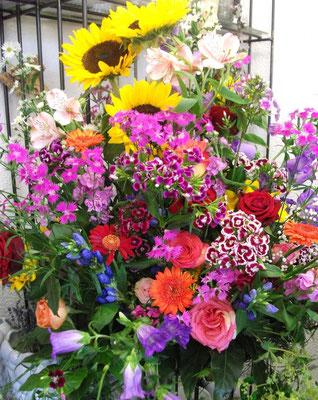 Sommerliche Blütenpracht