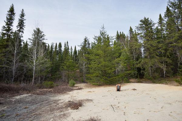 Vier Stunden vor der Bärenbegegnung...In der Nähe von Rouyn-Noranda, Quebec, Kanada 5/2014