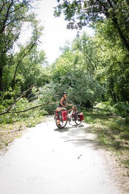 Auf etwa 350 km Radweg führt uns der Katy Trail quer durch Missouri. USA 6/2014