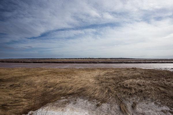 Fahrt durchs Marschland. New Brunswick, Kanada 4/2014