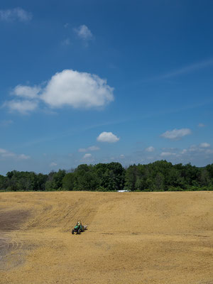 Hinterland and farming. Indiana, USA 6/2014