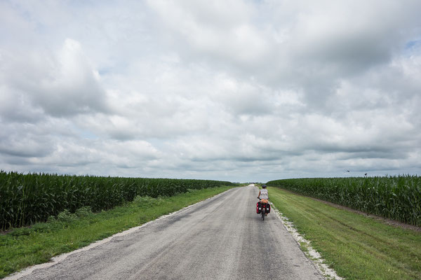 Somewhere in Illinois, USA 6/2014