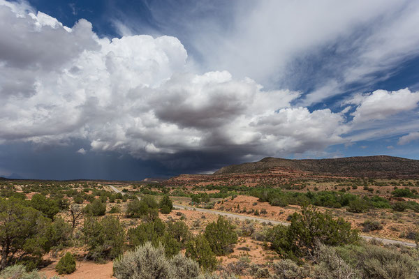 Wilde Landschaft. Utah, USA 8/2014
