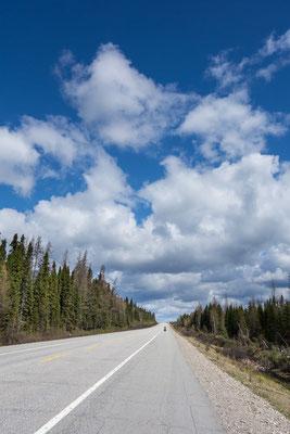 Wild-Reservat La Verendye. Quebec, Kanada 5/2014
