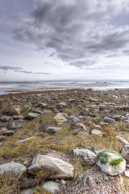 Ein Hauch von Frühling in Clam Bay. Kanada, 04/2014