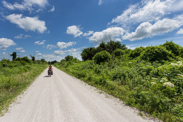 On the Katy Trail near Sedalia. Missouri, USA 7/2014