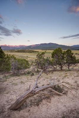 Ridgeway, Colorado, USA 8/2014