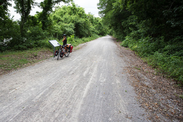 Riding on the Katy Trail.  Missouri, USA 6/2014