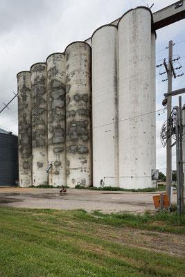 Immer nur Getreidesilos... Kansas, USA 6/2014