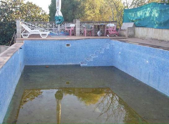Convertir piscina en ecológica en Mallorca